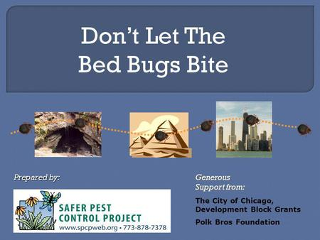 Dont Let The Bed Bugs Bite Generous Support from: Prepared by: The City of Chicago, Development Block Grants Polk Bros Foundation.