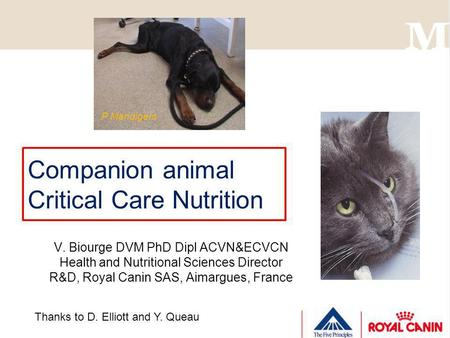 Companion animal Critical Care Nutrition