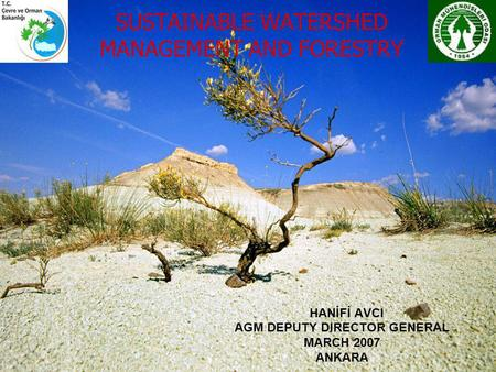 SUSTAINABLE WATERSHED MANAGEMENT AND FORESTRY HANİFİ AVCI AGM DEPUTY DIRECTOR GENERAL MARCH 2007 ANKARA.