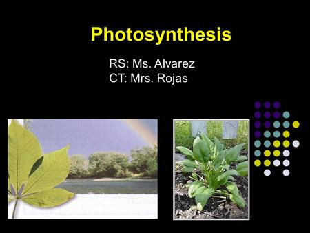Photosynthesis RS: Ms. Alvarez CT: Mrs. Rojas. Photosynthesis Autotrophs (Plants, algae, many bacteria) make organic compounds by photosynthesis. Chloroplast.