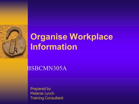 Organise Workplace Information BSBCMN305A Prepared by Melanie Lynch Training Consultant.