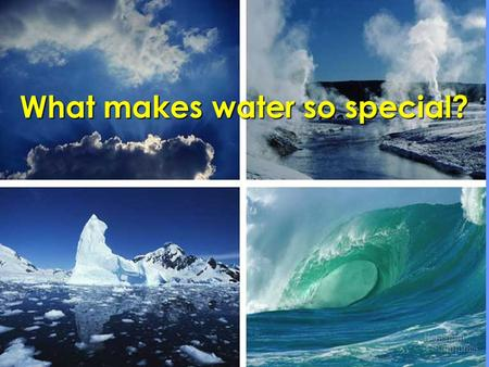 What makes water so special?