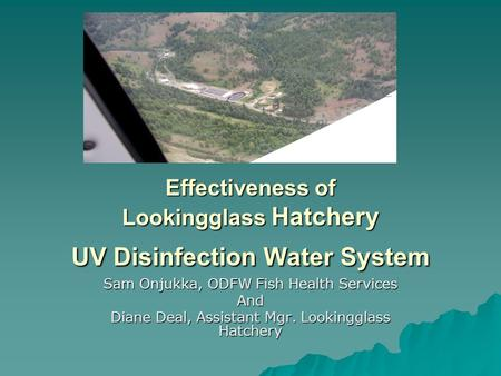 Effectiveness of Lookingglass Hatchery UV Disinfection Water System Sam Onjukka, ODFW Fish Health Services And Diane Deal, Assistant Mgr. Lookingglass.