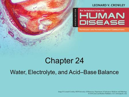 Chapter 24 Water, Electrolyte, and Acid–Base Balance.