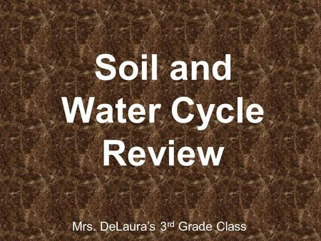 Soil and Water Cycle Review Mrs. DeLauras 3 rd Grade Class.