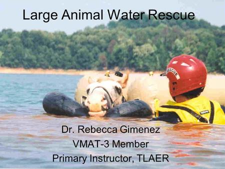 Large Animal Water Rescue Dr. Rebecca Gimenez VMAT-3 Member Primary Instructor, TLAER.