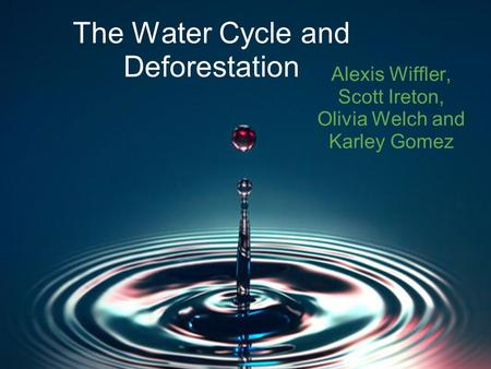 The Water Cycle and Deforestation Alexis Wiffler, Scott Ireton, Olivia Welch and Karley Gomez.