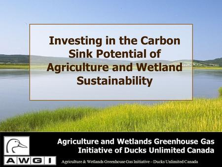 Investing in the Carbon Sink Potential of Agriculture and Wetland Sustainability Agriculture and Wetlands Greenhouse Gas Initiative of Ducks Unlimited.