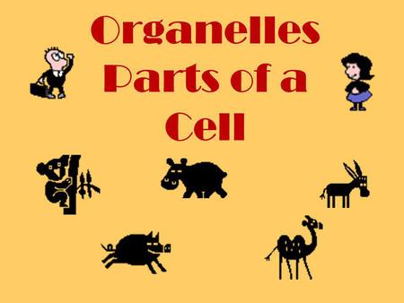 Organelles Parts of a Cell