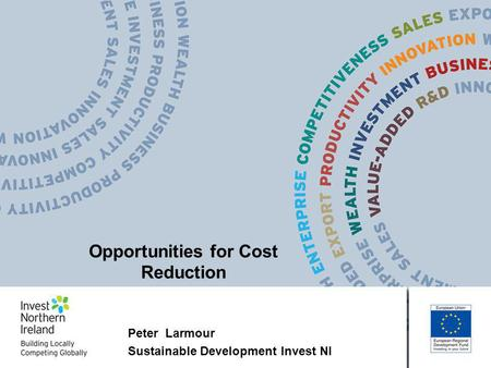 Peter Larmour Sustainable Development Invest NI Opportunities for Cost Reduction.