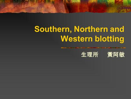 Southern, Northern and Western blotting