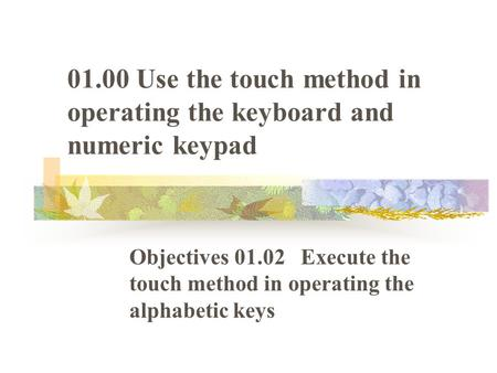 01.00 Use the touch method in operating the keyboard and numeric keypad Objectives 01.02 Execute the touch method in operating the alphabetic keys.