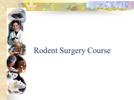 Rodent Surgery Course Why???? Laws and regulations dictate appropriate procedures and care.