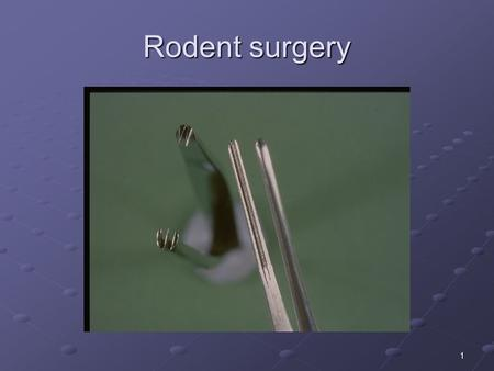 1 Rodent surgery. 2 Recovery Surgery in Rodents LASA Good Practice Guidelines Separate space Separate space Gown Gown Instrument sterility Instrument.