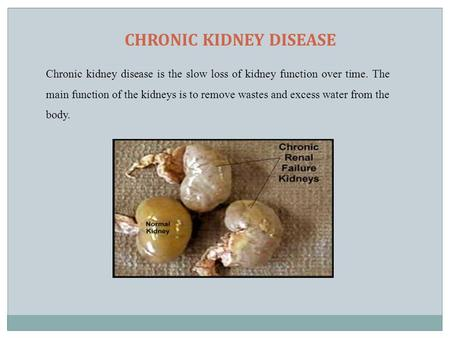 CHRONIC KIDNEY DISEASE Chronic kidney disease is the slow loss of kidney function over time. The main function of the kidneys is to remove wastes and excess.