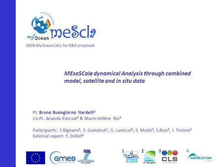 MEsoSCale dynamical Analysis through combined model, satellite and in situ data PI: Bruno Buongiorno Nardelli 1 Co-PI: Ananda Pascual 2 & Marie-Hélène.