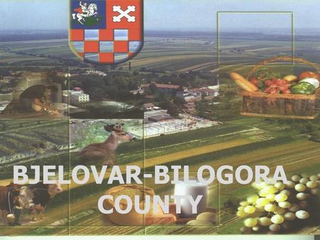 BJELOVAR-BILOGORA COUNTY. Croatia - Croatia is a country in Central Europe at the crossroads of the Pannonian Plain and the Adriatic Sea. - Its Capital.