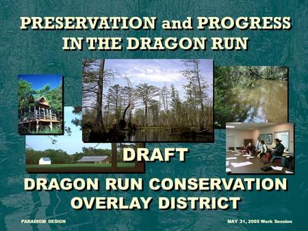 PRESERVATION and PROGRESS IN THE DRAGON RUN DRAFT DRAGON RUN CONSERVATION OVERLAY DISTRICT PRESERVATION and PROGRESS IN THE DRAGON RUN DRAFT DRAGON RUN.