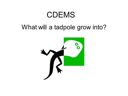 CDEMS What will a tadpole grow into? CDEMS What will a tadpole grow into? A tadpole will grow into a ___.