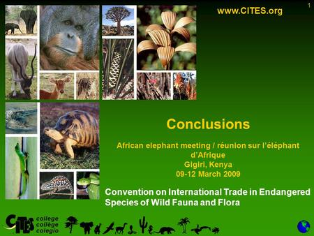 1 Convention on International Trade in Endangered Species of Wild Fauna and Flora www.CITES.org Conclusions African elephant meeting / réunion sur léléphant.