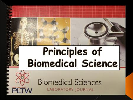 In the Academy of Biomedical Sciences we have had many unique experiences. We constantly remain busy and develop our research skills, but we still manage.