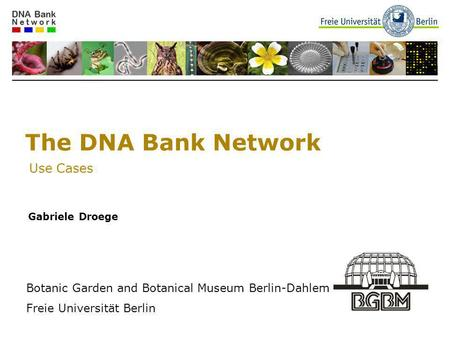 The DNA Bank Network Use Cases Gabriele Droege Botanic Garden and Botanical Museum Berlin-Dahlem Freie Universität Berlin.