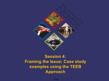 TEEB Training Session 4: Framing the Issue; Case study examples using the TEEB Approach ©TEEB.