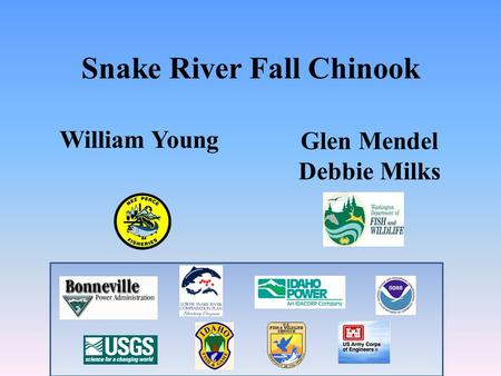 Snake River Fall Chinook Glen Mendel Debbie Milks William Young.