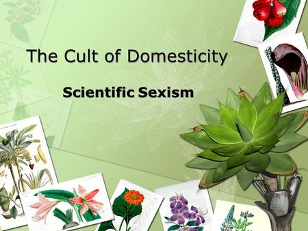 The Cult of Domesticity Scientific Sexism. What was the Cult of Domesticity? It was a new ideal of womanhood arising from womens magazines, advice books,