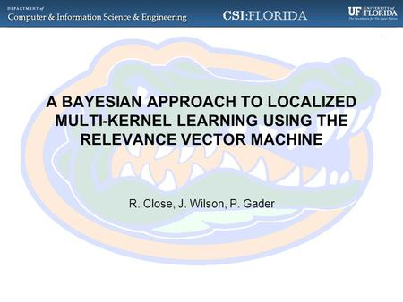 CSI :Florida A BAYESIAN APPROACH TO LOCALIZED MULTI-KERNEL LEARNING USING THE RELEVANCE VECTOR MACHINE R. Close, J. Wilson, P. Gader.
