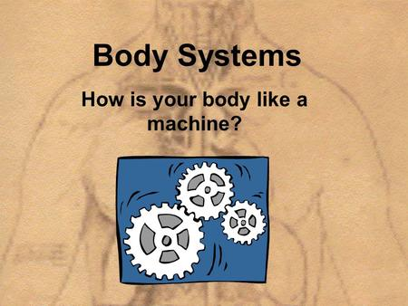 Body Systems How is your body like a machine?. Lets think back…. Why do all the body systems work together?