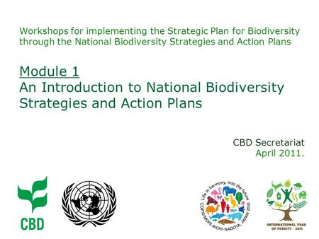 Workshops for implementing the Strategic Plan for Biodiversity through the National Biodiversity Strategies and Action Plans CBD Secretariat April 2011.