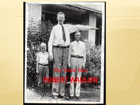 The Tallest Man. Robert was the first born of Addie and Harold Wadlow. Later the Wadlow family grew with the addition of two sisters, Helen and Betty,