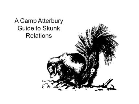 A Camp Atterbury Guide to Skunk Relations. Striped Skunks (Mephitis Mephitis) are short and stocky, with a small elongated head. Legs are short with powerful.