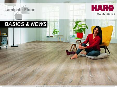 Laminate Floor BASICS & NEWS.