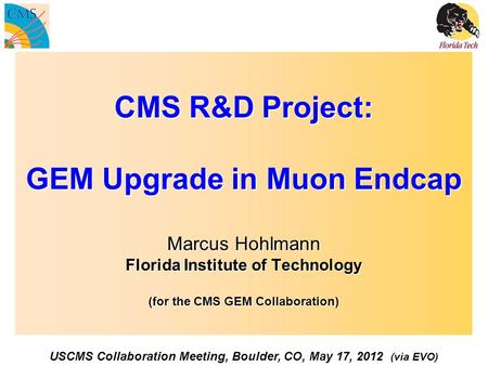 CMS R&D Project: GEM Upgrade in Muon Endcap Marcus Hohlmann Florida Institute of Technology (for the CMS GEM Collaboration) USCMS Collaboration Meeting,