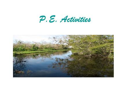 P.E. Activities. List of animals for Who Am I Earth worm Otter Big Mouth Bass Yellow Rat Snake Dragonfly Black Bear Field MouseMosquito White Tailed.