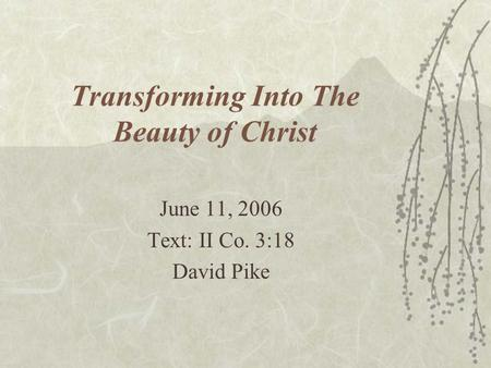 Transforming Into The Beauty of Christ June 11, 2006 Text: II Co. 3:18 David Pike.