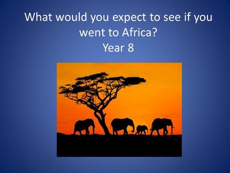 What would you expect to see if you went to Africa? Year 8.