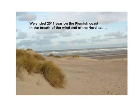 We ended 2011 year on the Flemish coast In the breath of the wind and of the Nord sea…