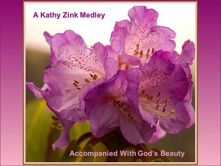 A Kathy Zink Medley Accompanied With Gods Beauty.
