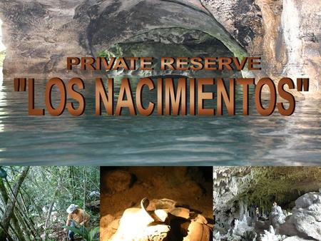 Cultural and ecological park LOS NACIMIENTOS was born after the initiative to offer national and international tourists an alternative to those who seek.