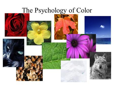 The Psychology of Color. Red produces strong emotions of excitement and intensity most exciting color love and comfort is used to focus/ draws attention.