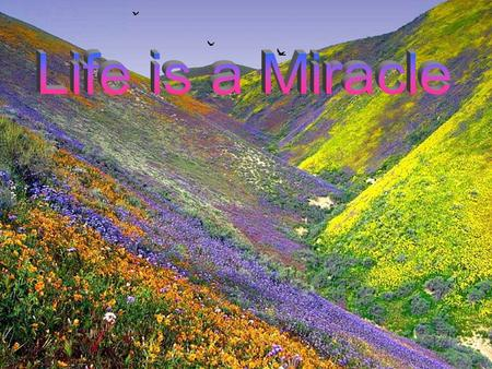 Life is a miracle Don't let it slip away, Open your heart to others Give of yourself each day.