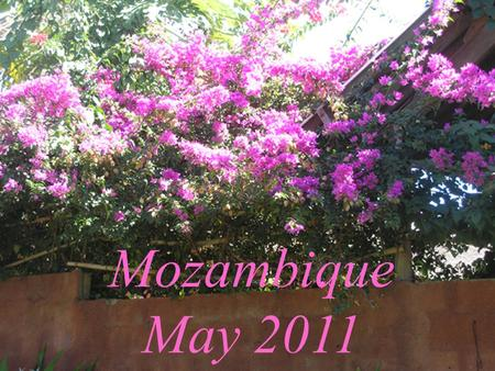Mozambique May 2011. Matthew 28: 19 Therefore go and make disciples of all nations, …