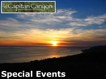 Special Events. Cedar Cabins Lush Surroundings Friendly Visits.