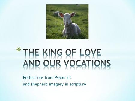 Reflections from Psalm 23 and shepherd imagery in scripture.