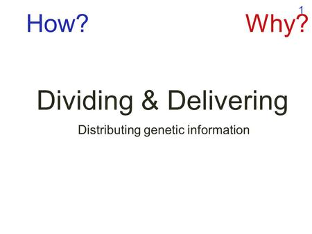 1 Dividing & Delivering Distributing genetic information How?Why?