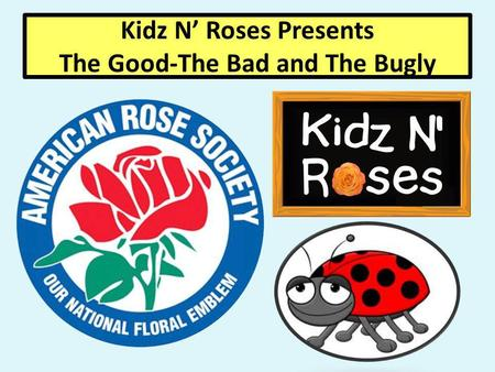 Kidz N Roses Presents The Good-The Bad and The Bugly.