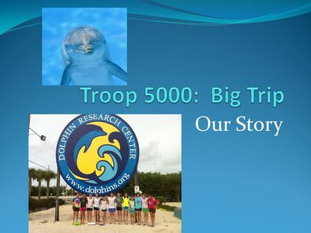 Our Story. Troop 5000 always loved dolphins! The troop had many fund raisers to benefit wild life, especially marine animals! From Pedal for Penguins.